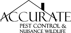 Accurate Pest Control NY