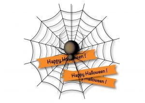 spider removal services near me