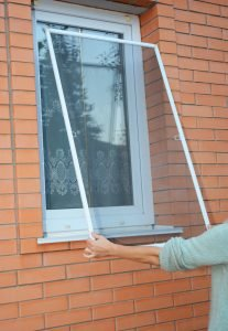 Mosquito protection in Schenectady, NY