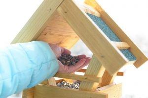 pest control services in Niskayuna NY