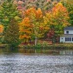 Lake house pest control Saratoga Lake